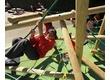 Climbing Frames Play