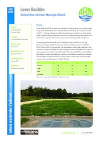 Reed bed case study