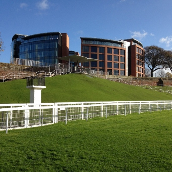 Chester Racecourse 3 weeks after hydroseeding