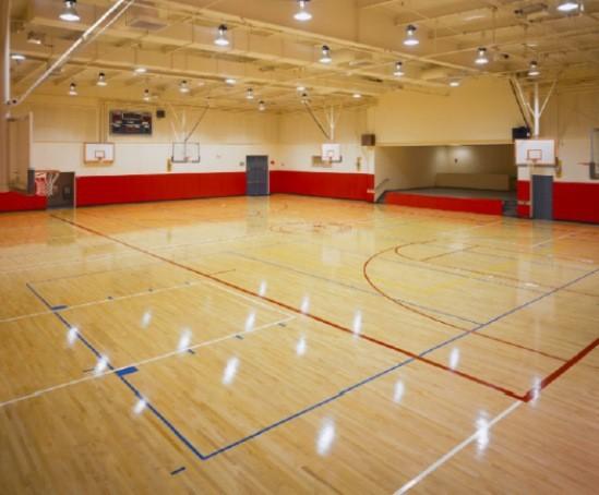Olympian Multi Purpose Sports Flooring System Durabella