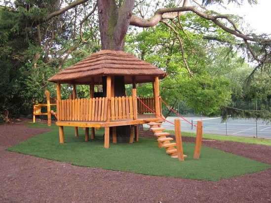 Treehouse teaching platform