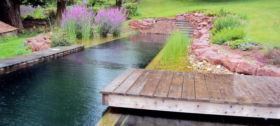 Natural Swimming Pool Bristol Clear Water Revival ESI