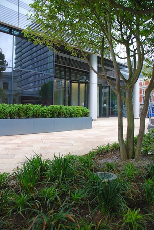 Bespoke steel planters at 10 Hammersmith Grove