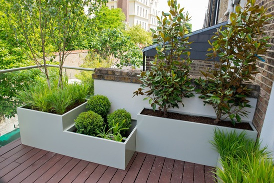 Planter modules for a small residential terrace in N7