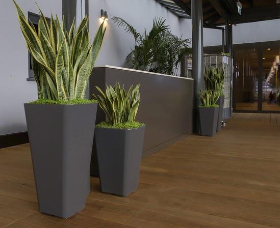 Boulevard QUADRA planters at restaurant reception area