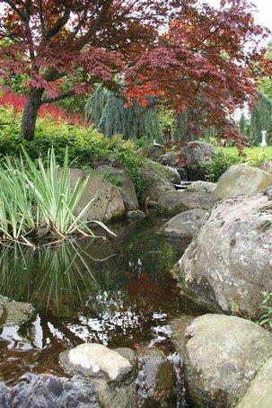 Splash Gordon watercourse design and build services