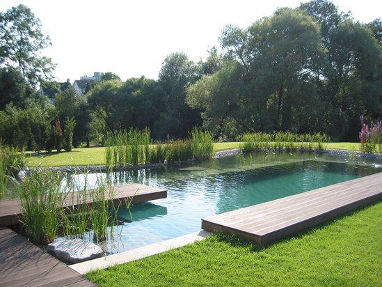 Natural swimming pond from Splash Gordon