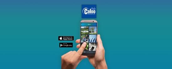 Caloo Pulse App