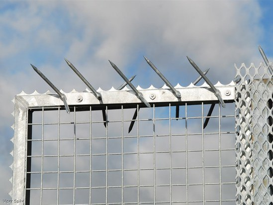 Viper spike high security fence wall topping jacksons