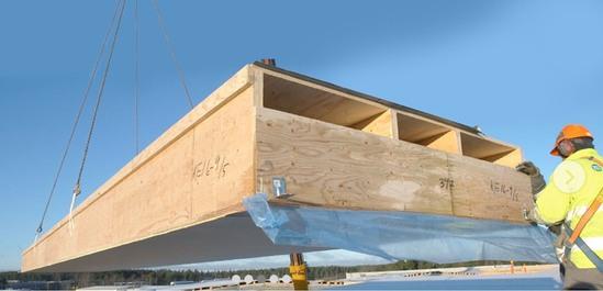 Kerto Q laminated veneer lumber