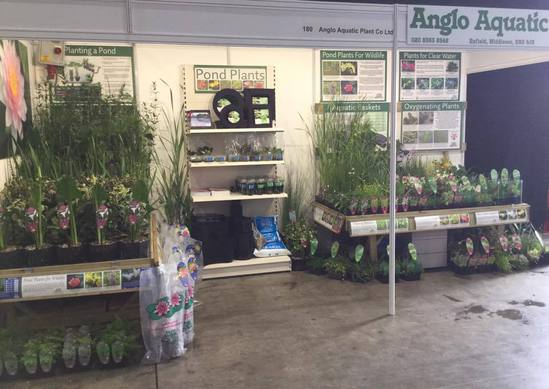 See Anglo Aquatic Plant Co at 4 Oaks Trade Show in Sept