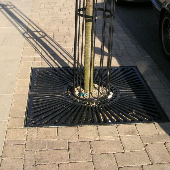 Cast iron tree grille