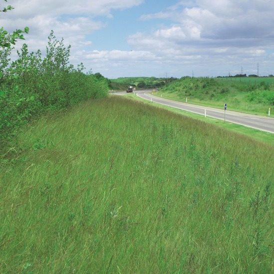 Pro Master 85 is suitable for road verges
