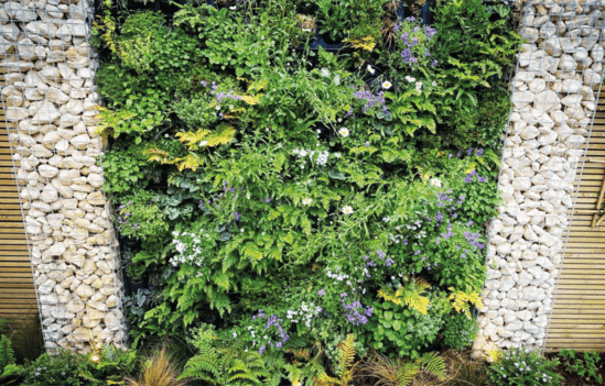 G-WALL Multi-Panel with established planting