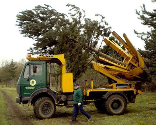 Big John 1.6m 4x4 truck-mounted tree spade