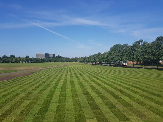 Turf being laid in Glasgow Green