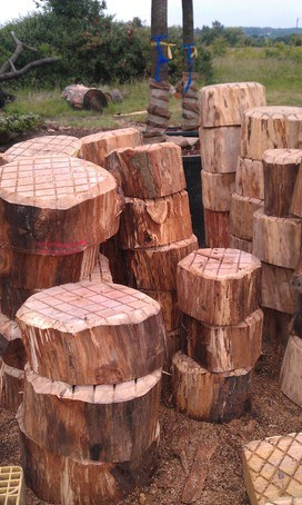 Natural stepping logs for playgrounds