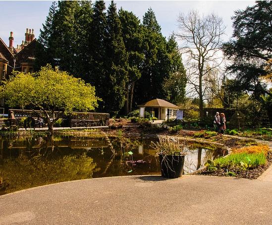 Pond lining bristol university botanical garden for Product design consultancy bristol