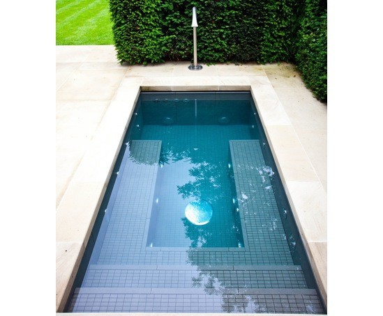 Twin Spa Plunge Pools Victorian Villa Notting Hill London Swimming Pool Company Esi