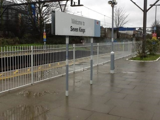 Mid platform safety railings for train station