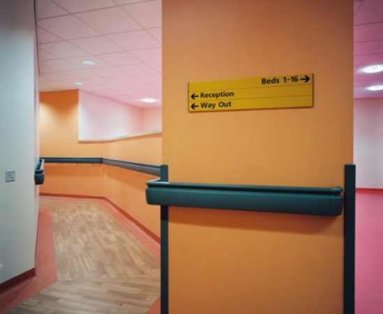 HRB20 Combined Hand/Crash Rail at UK Hospital