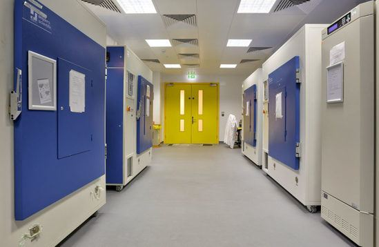 Bristol Life Sciences laboratory area