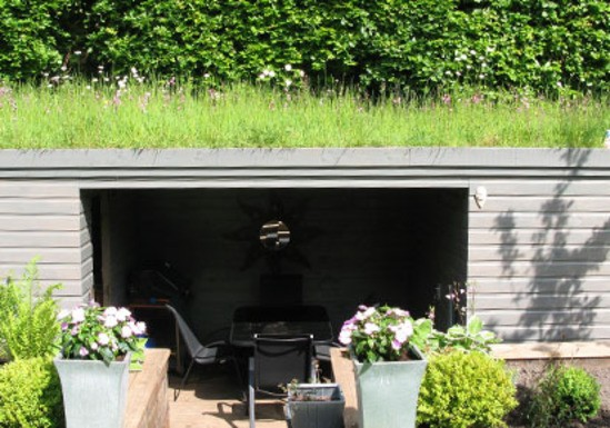 Uk Native Wildflower Roof Turf For Green Roofs