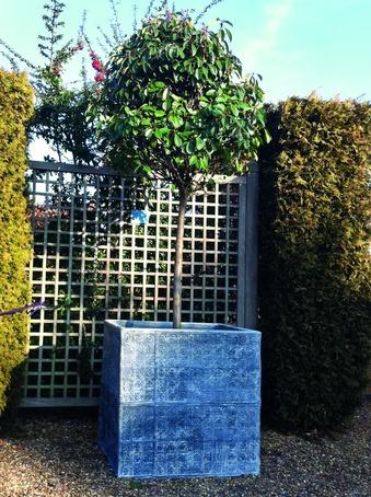 Cardinal Cube planter