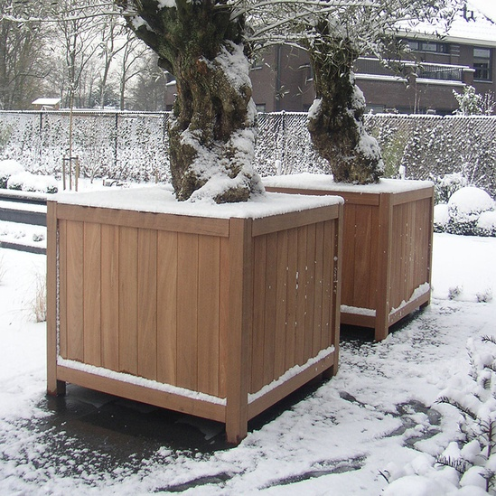 Hardwood valencia cube planter