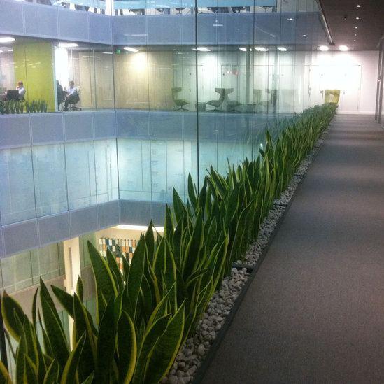 Suspended Decking: Watertight Planters In Suspended Floor, Lendlease