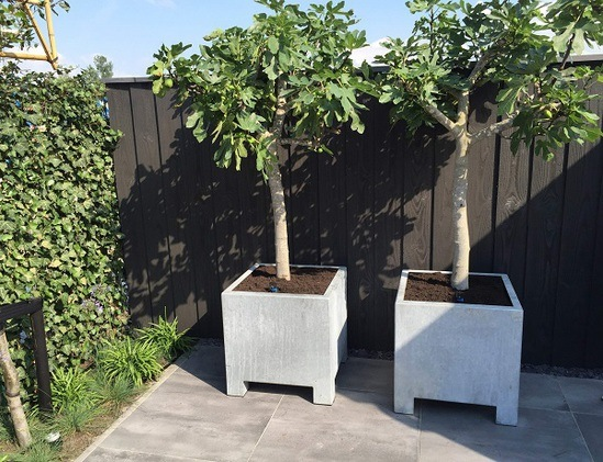 Vadim planters are available in large sizes