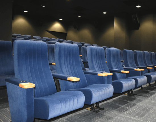 Paragon seat for community cinema