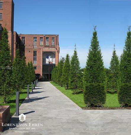 Angel field garden liverpool hope university lorenz von for Greenspire solutions
