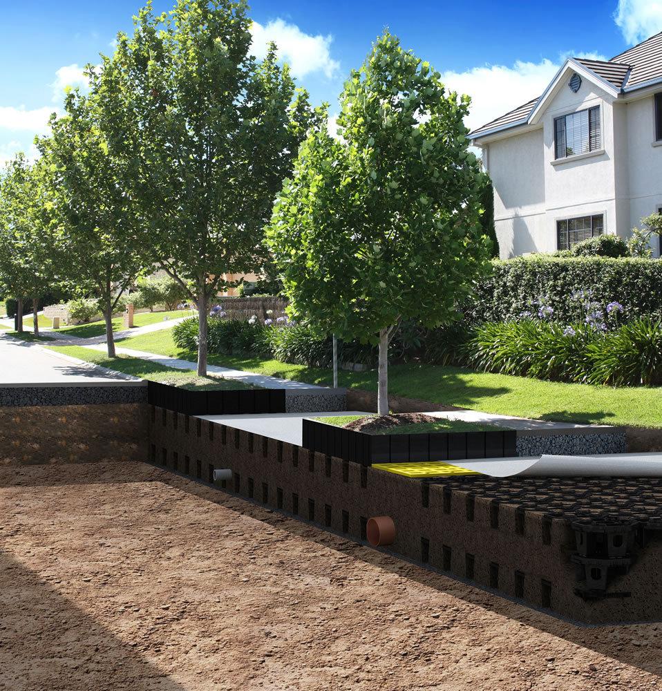 The Principles Of Successful Urban Tree Pit Design
