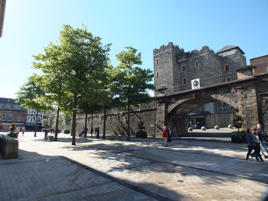 Tree pit design for Derry city centre