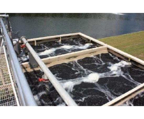 Mbbr Fixed Film Process System Evoqua Water Technologies
