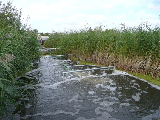 Mayfield Farm Treatment Works FBA™ reedbed system