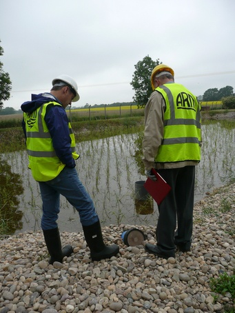 Proactive management of reedbeds secures performance