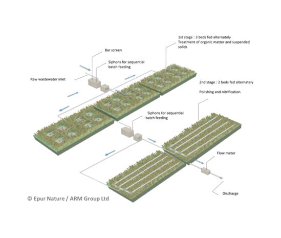 Phragmifiltre wetland sewage treatment system