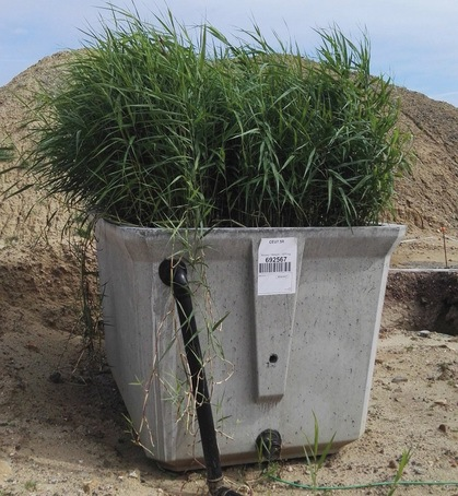 Phytocube is a compact reedbed system for low flowrates