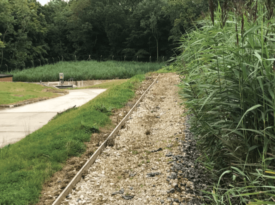 Vertical reed bed system