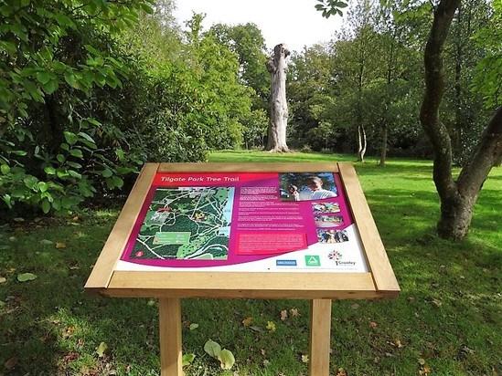 Twin leg oak lectern tilgate park