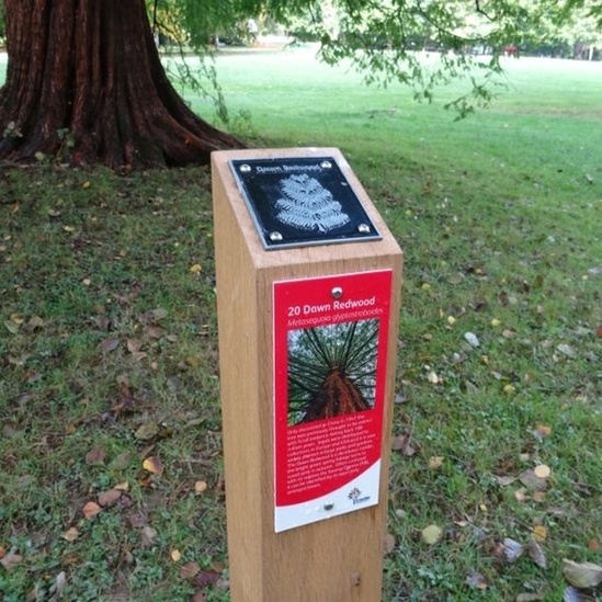 Waymarking post with plaques - Tilgate Park