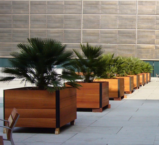 Large capacity planter for trees and shrubs
