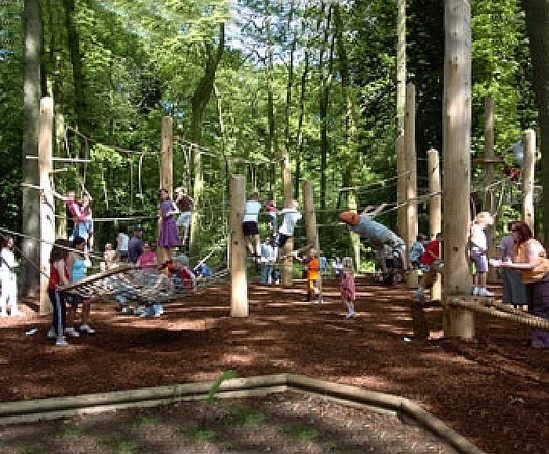bespoke climbing forest  coombe abbey country park