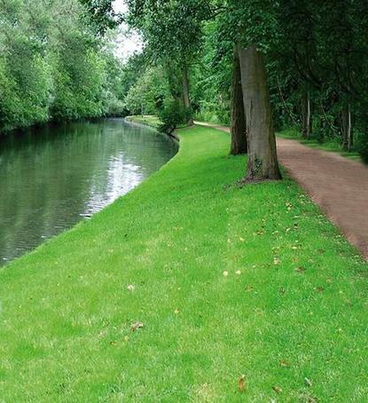 Landscape and embankments