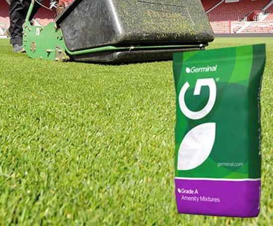 A20 Premier Ryesport grass seed mixture