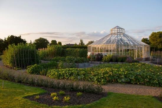 Global Growth Vegetable Garden, RHS Hyde Hall