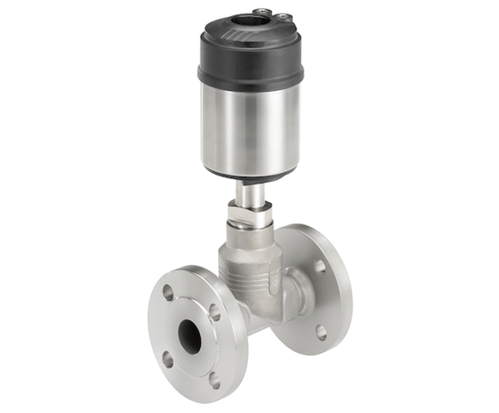 Type 2301 globe control valve