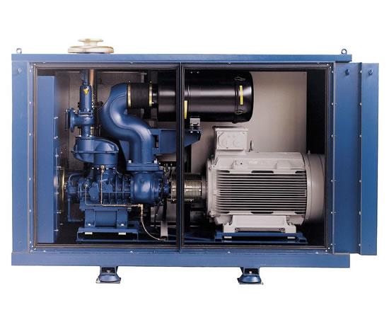 Rotary Screw Blower : Aerzen g delta screw compressor machines esi